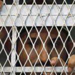 في العاصمة صنعاء .. المؤتمريين يتعرضون لعمليات تعذيب نفسي وجسدي كبيرة من الحوثيين..!؟ – (تفاصيل)