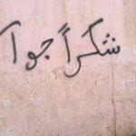 """شاهد   """" شكرا جواس"""" تخط على جدران الشوارع.. شعارات مناوئة للحوثيين في تهامة تنديدًا بجريمة الإعدام الجماعي"""
