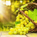 ليس قمامة بل كنز..فوائد خيالية لنواة هذة الفاكهة الشهيرة في اليمن يحارب الكثير من الامراض الخطيرة منها السكري وامراض القلب